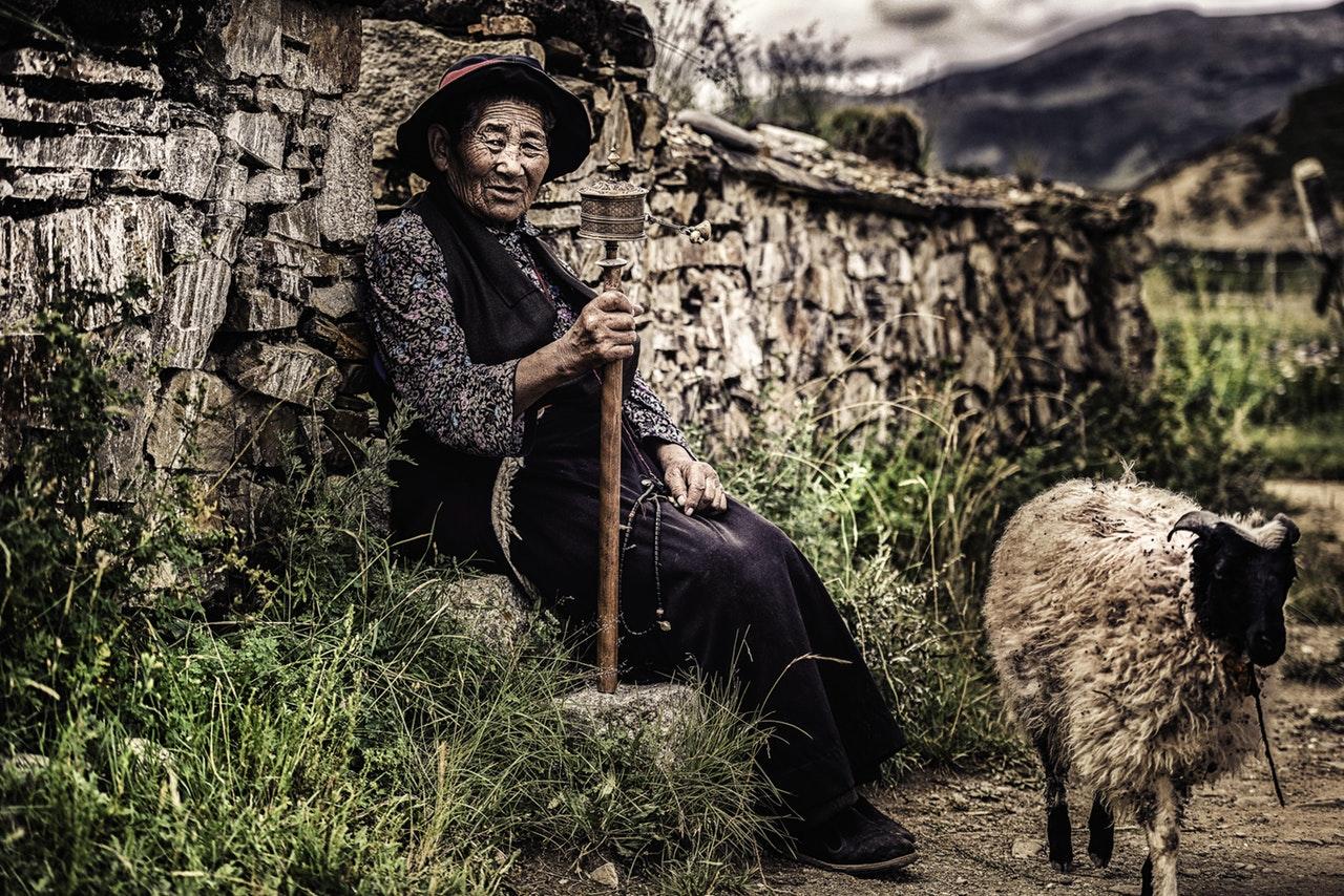 David: The Shepherd